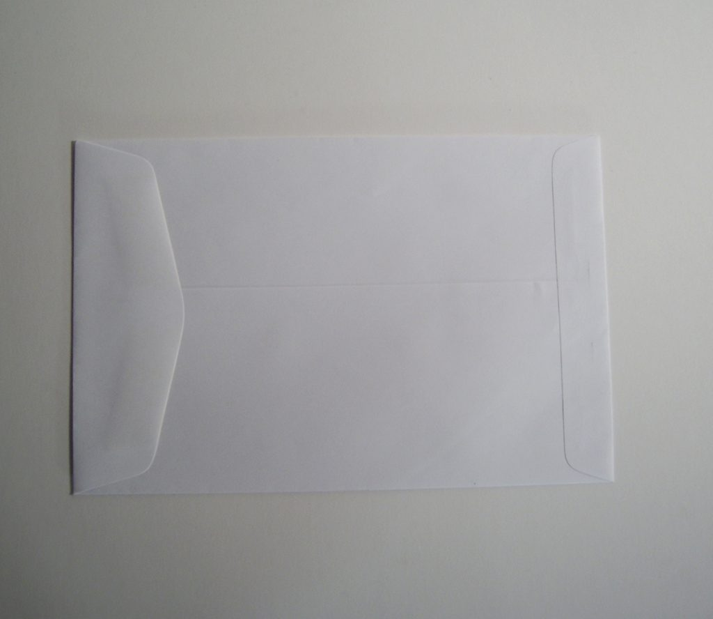 6 x9 Catalog Envelope