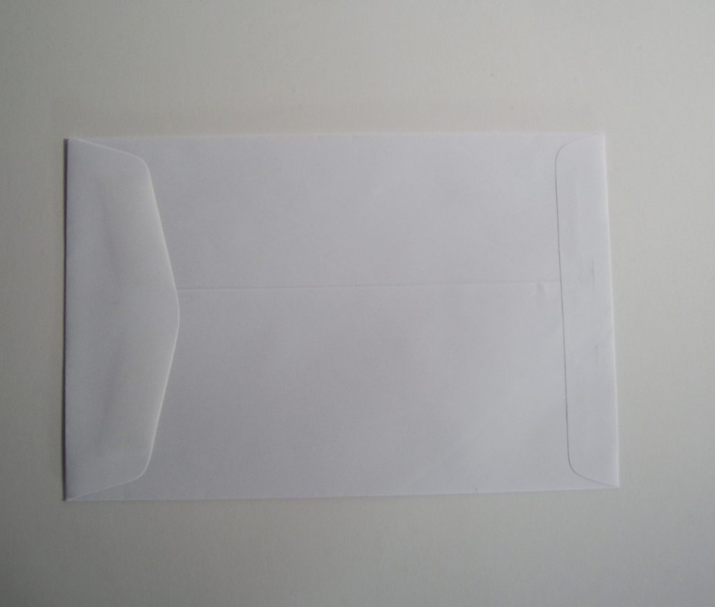9 x 12 Catalog Envelope